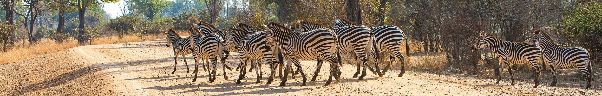 Nambiti Reserve