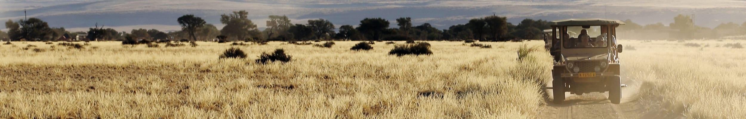 Pilanesberg Reserve