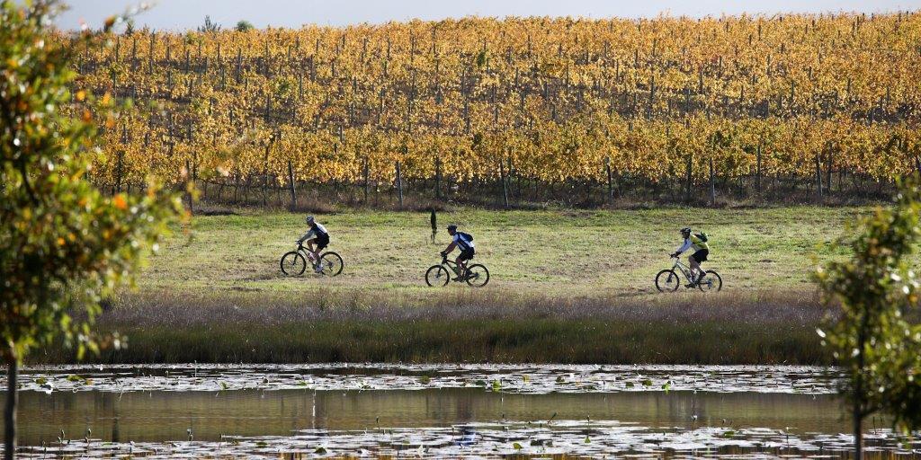 2012 may houwhoek (7)